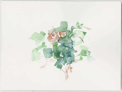 2018-08-31__most-na-soci_soca, water colour, 24 x 32 cm (Kirsten Kötter)